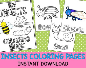 Insects Coloring Book Pages