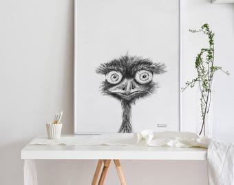 Surprised ostrich illustration, decor, pencil drawing, wall prints, home decor, illustration print, charcoal drawing, wall art prints,