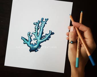 Titanium Blue Coral - Colored Pencil Art Print by Headspace Illustrations
