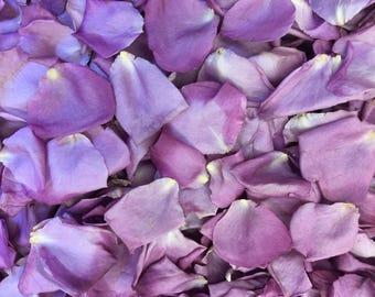 Lavender Rose Petals. 100 cups Petals. Wedding Petals. Wedding Decorations.Flower Petals. Flower Girl Petals. Confetti. Real Rose Petals USA