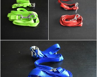 Nylon Collar and Leash Set