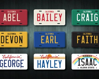 Custom USA Style License Plate Digital File (choose your design, wording and colour)