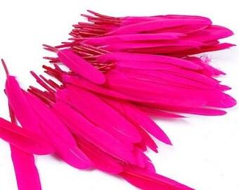 10 dark pink goose feathers