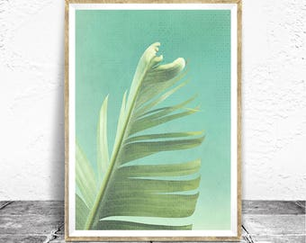 Palm Leaf Print - Baydreem. Palm Leaf Wall Art Palm Leaf Art Tropical Printable Download Palm Art Minimalist Tropical Leaf Art Tropical Art