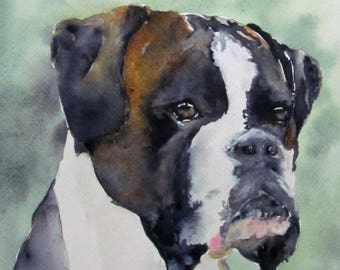 Dog black white red Brindle Boxer - animal portrait - animal art