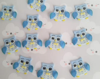 Owl Birthday Decorations, 12 Owls Cupcake Toppers, Owl First Birthday Favors, Owl Birthday Party Theme, Blue Owl Baby Shower Decoration