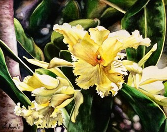 Yellow Sobralia orchid, watercolor painting ,floral art,original work,botanical gardens