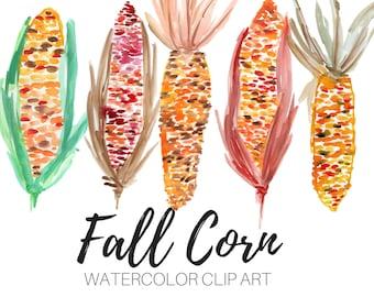 Watercolor clip art - fall clip art - autumn clip art - corn clip art - vegetable clip art - Commercial Use
