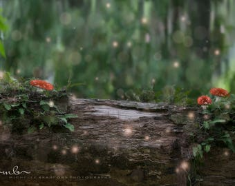 Magical fairy log in forest digital background / backdrop for photography /newborn / composite
