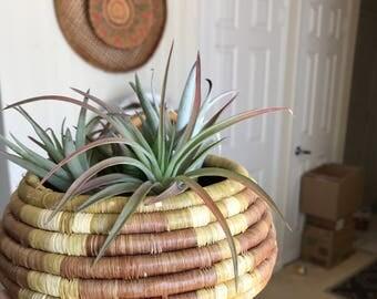Beautiful coil basket