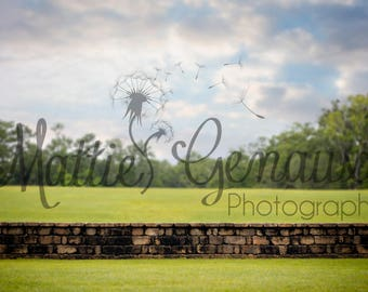 Serenity Wall Digital Backdrop