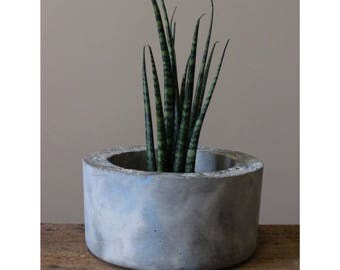 Coastal Concrete Planter