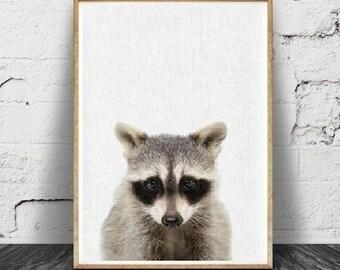 Raton laveur Print, bébé, Animal, animaux de la forêt Wall Art, décor de chambre d'enfant, Baby Shower, affiche grand format imprimable,