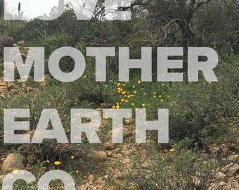 Arizona, spring, wildflowers, Usery Mountain Regional Park, nature, photography