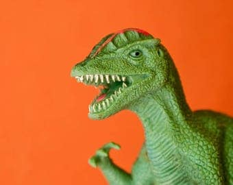 "Photography colorful plastic toy dino dinosaur  photograph orange green kids children wall art ""Toothy Dino"""