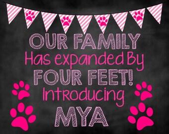 New Girl Puppy, New Puppy Chalkboard, New Puppy Announcement