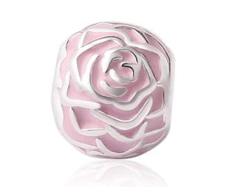 Variety pink Premium
