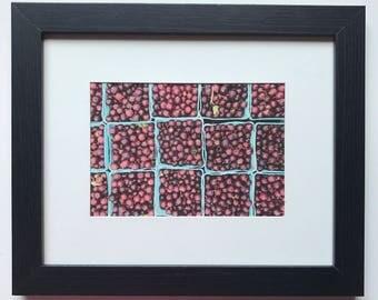 FOOD PHOTOGRAPHY PRINT - farmers market produce art - kitchen art - fine art print - gooseberries