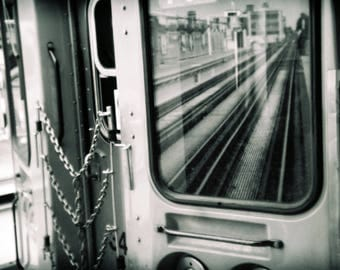 The Brown Line L
