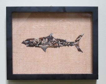 Great White Shark plain in Shadow Box
