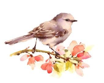 Bird Watercolour Painting Q59