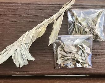 Loose Leaf Sage