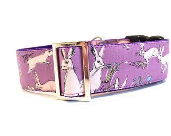 Clip collar, greyhound collar, sighthound collar, dog collar, walking collar, collar