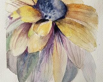 watercolor flower, a daisy