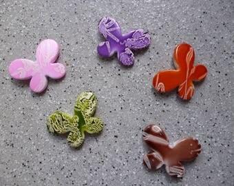 5 pearls multicolored butterflies in resin