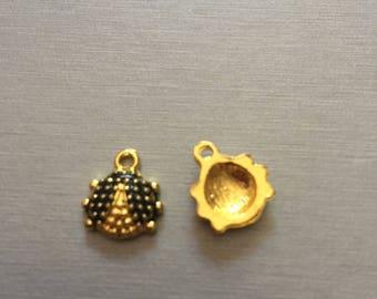 Gold and black Ladybug