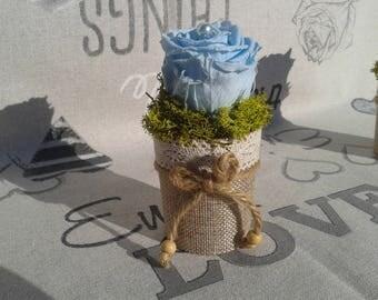 Eternal rose, floral, pink blue light pastel in a pretty glass vase Burlap, lace