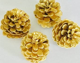 Painted Gold, Red and Blue Pine Cone 12 pcs.