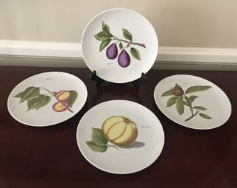 Vintage Hutschenreuther Selb LHS Germany PASCO fruit plates. Set of 4