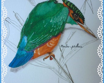 Decoration: drawing and watercolor for beautiful Kingfisher