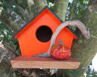Pumpin Patch Birdhouse