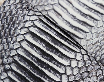 Skin snake leather brush off