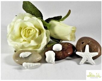Scented ceramic Mini mix plaster Shells.