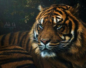 Red Tiger on green trees portrait poster 20 x 30 cm