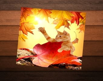 square card with cat, dream of leaves