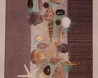 shells, driftwood, on canvas stretcher frame