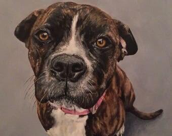 Custom Animal/ Pet Portrait Commission, Dog portrait