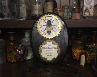 APIS MELLIFERA STEAMPUNK-picture decoration wood tattoo Entomology entomological Museum vintage Bee Insect Black Gears Brass Studio