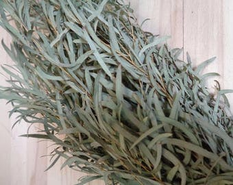Dried Willow Eucalyptus, Dried Flower, Dried Green, Eucalyptus Garland, Eucalyptus Wreath, Eucalyptus Crown, Dried Bouquet, Dried Leaves