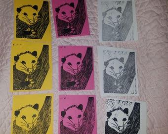 Possum prints