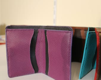 Credit card and greeting card case holder