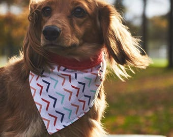 Dog Bandana | Double-sided | Follow Me | Free Shipping to Canada