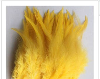 10 yellow Rooster feathers