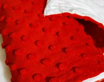 Red Polka Dot Minky Baby Blanket/ Pet Blanket with White Cotton Liner, Reversable, One of a Kind