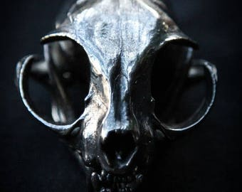 cat skull electroplated black chrome taxidermy