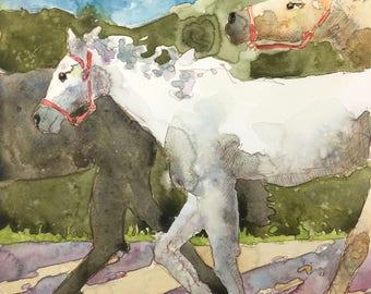 "White Horse 8""x8"" Original Watercolor Painting"